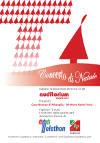 Sabato 12 dicembre 2015 - Concerto di Natale
